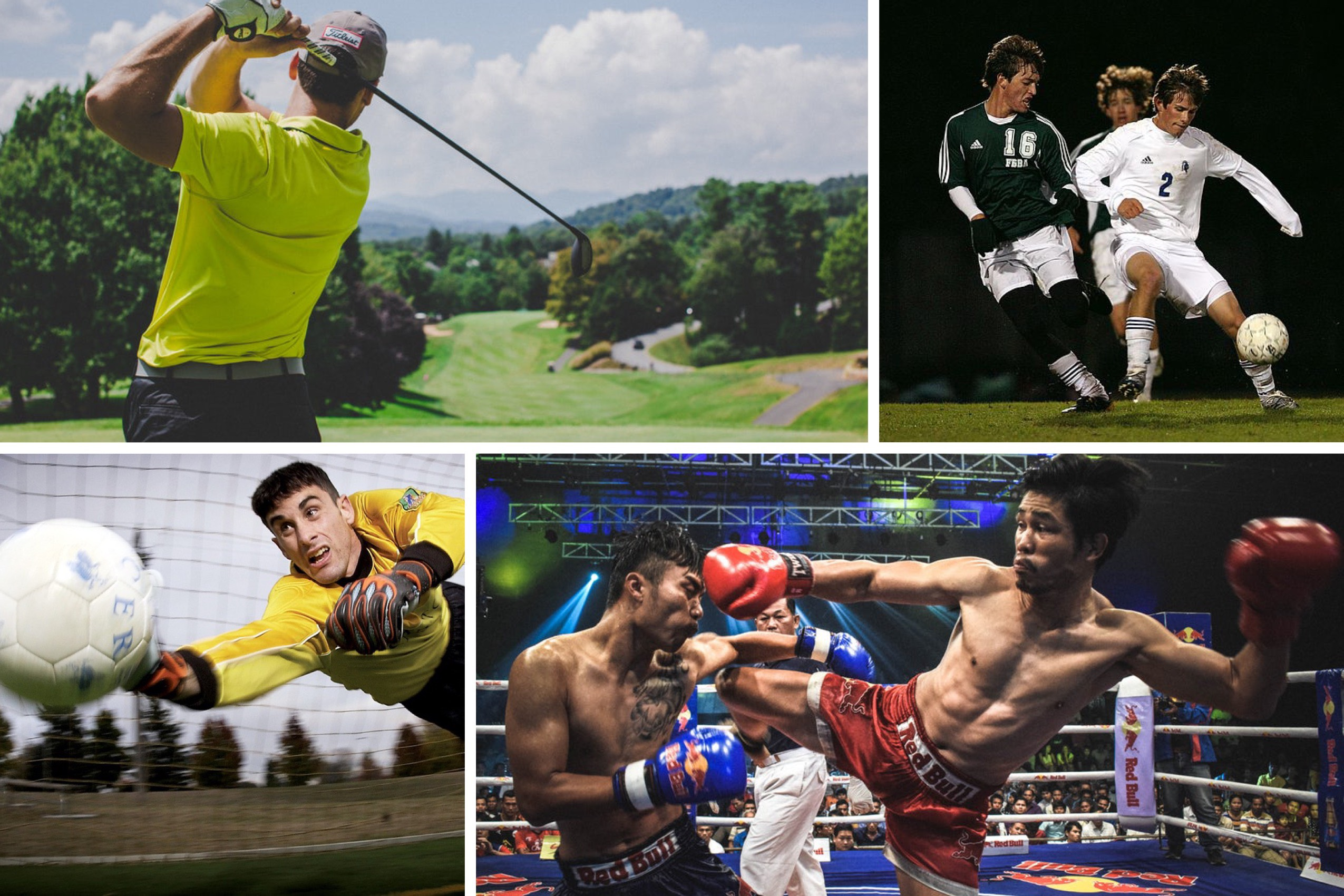sport professionali